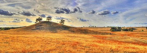 Land use attorneys in Sacramento, CA and Los Angeles, CA